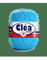 clea-1000---9113-f